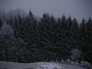 창 너머로 보이는 흑백의 풍경
